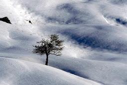 イランの美しい雪景色