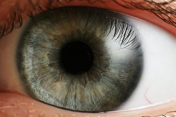close-up of an eye featuring the pupil