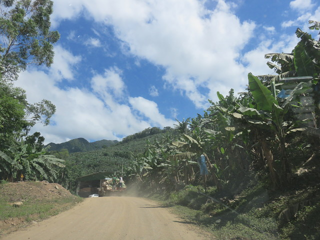 The road that leads to Rota das Cachoeiras. There are some banana farms on the way.
