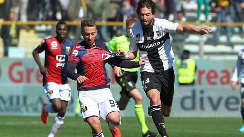 Phong độ thi đấu của Genoa được nhận định là tốt hơn Palermo