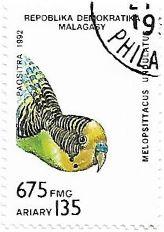 Selo Periquito-australiano