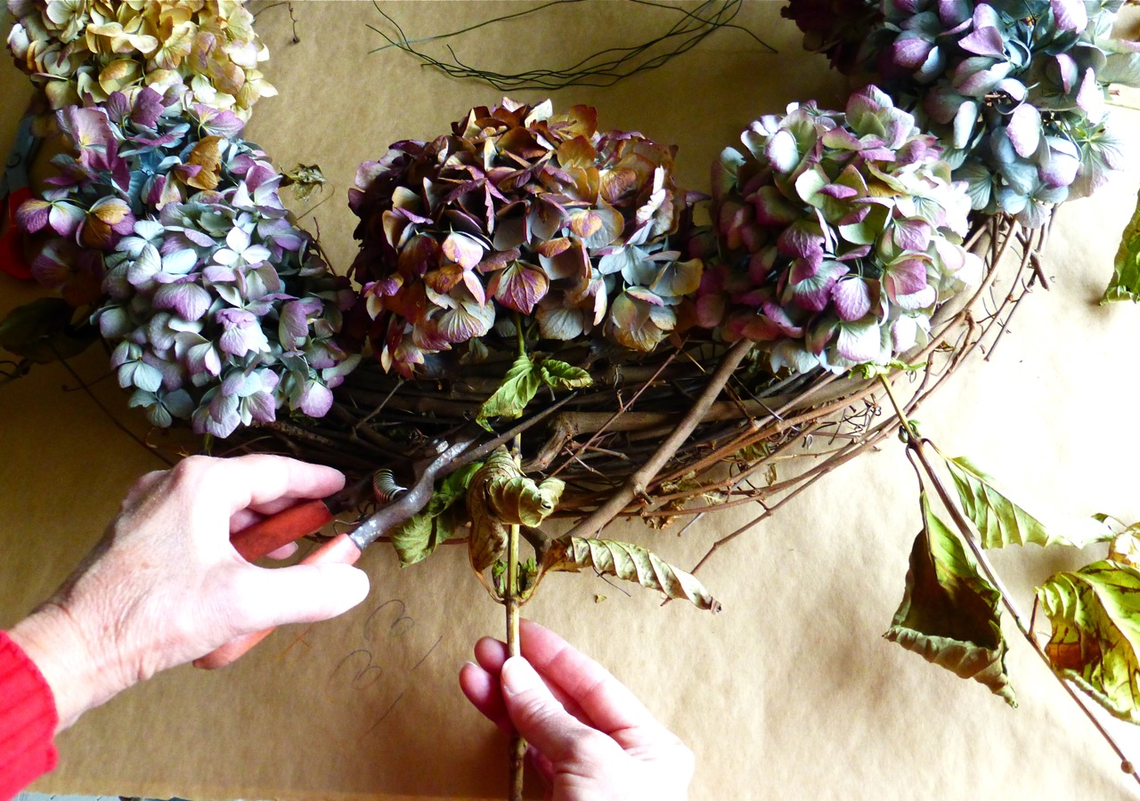 hydrangea wreath, Hydrangea wreath, do it yourself hydrangea wreath, cutting hydrangea flowers for wreath, cutting hydrangea flower heads for wreath