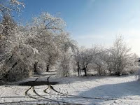 """A Short Paragraph On """" A Winter Morning"""" """"Winter Morning""""  Essay and composition for higher studies In his article you will get detail for your help so read A Winter morning a winter morning paragraph for class 12,winter morning paragraph in bengali,winter morning composition for class 10,  winter morning paragraph pdf,paragraph a winter morning,a winter morning i have enjoyed paragraph,  a winter morning paragraph for class 8 very long,winter morning in village,winter morning bangladesh,a winter morning paragraph for class 12,paragraph winter,winter morning in bangladesh village,winter morning essay in bengali,   early rising paragraph for jsc,essay on a cold day in winter,a winter morning for class 7,essay on winter vacation for class 7,picture of winter morning,winter morning poem,winter morning image,short story on winter morning,definition of winter morning,a winter evening paragraph,winter morning paragraph in bengali language,winter morning in bangladesh paragraph,winter morning picture in village,"""
