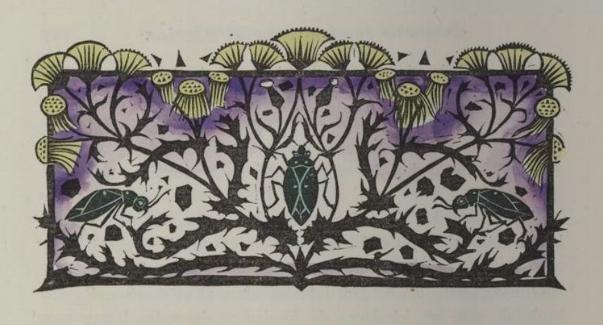 stylised pattern of beetles