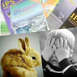 Anakku Bukan Kelinci Percobaan Kurikulum Karena Dia Bukan Kelinci