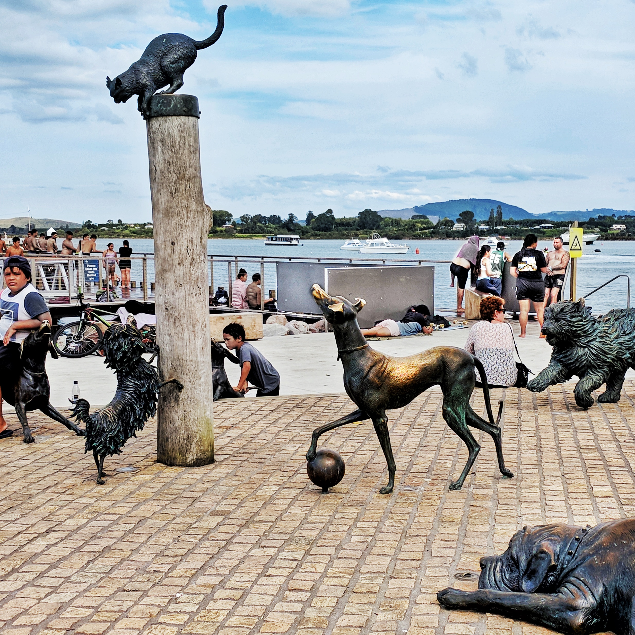 Hairy Maclary and friends sculpture on Tauranga waterfront