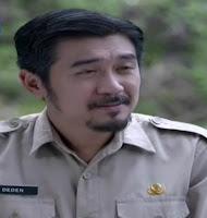 Ananda George sebagai Pemeran Sultan Demak