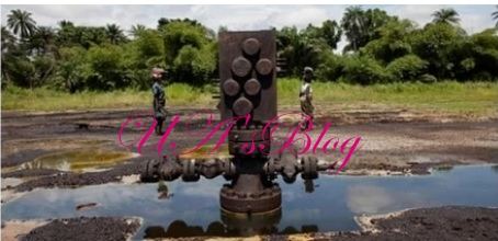 Excitement in Northern state as 7 wells 'confirm' existence of crude oil in commercial quantity