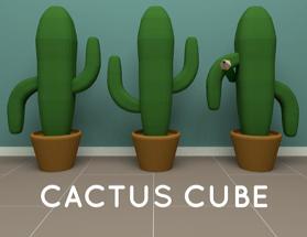 Nicolet Cactus Cube