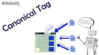 Canonical Tag - 301 Redirects, and Noindex Robots Meta Tags
