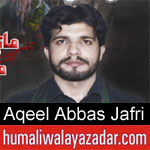 https://humaliwalaazadar.blogspot.com/2019/08/aqeel-abbas-jafri-nohay-2020.html