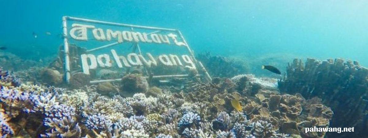 wisata gabungan trip pulau pahawang lampung