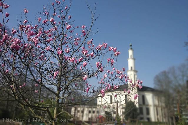 Cinquantenaire Mosque Brussels
