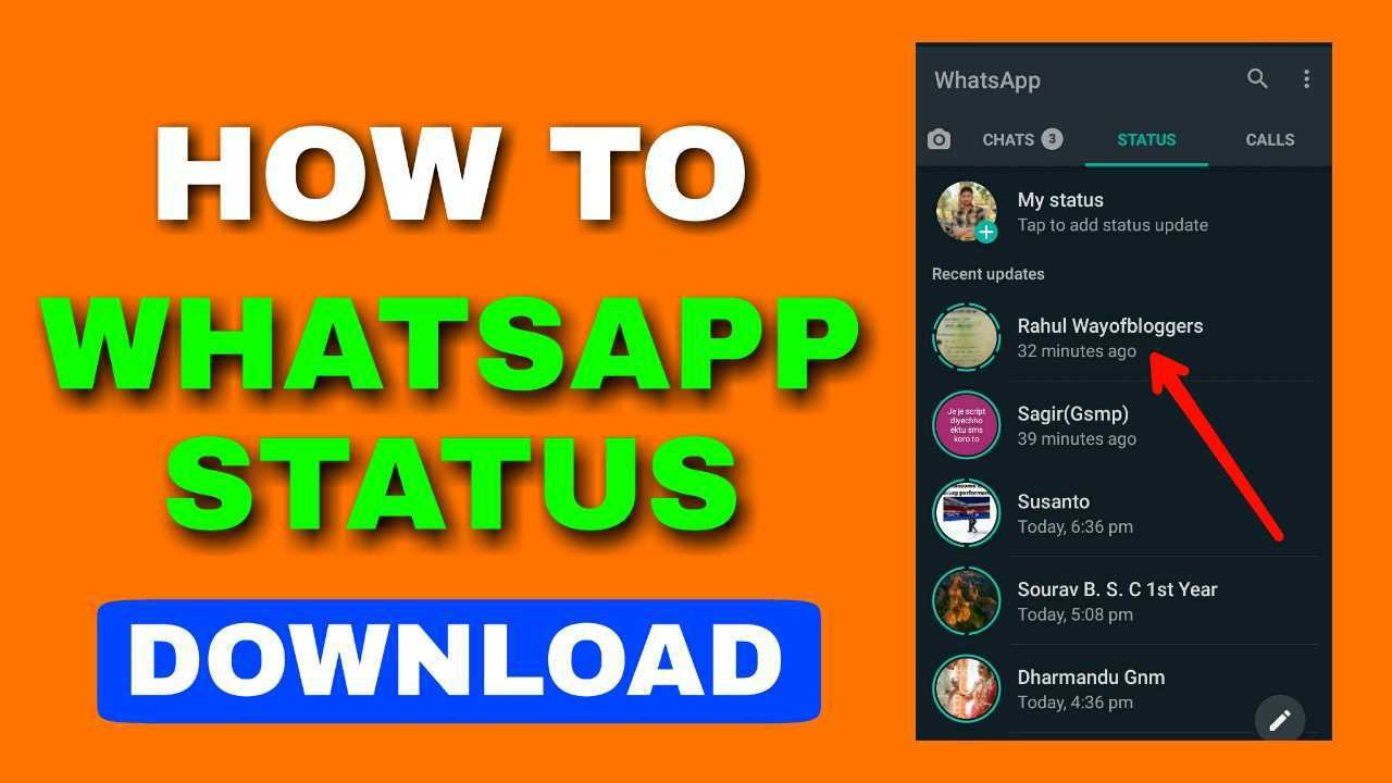 whatsapp status download, how to download whatsapp status, whatsapp status,