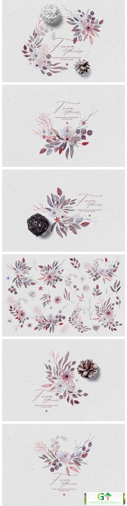 Watercolor Floral Set - Frozen Flowers [Stock Image] [illustrations]