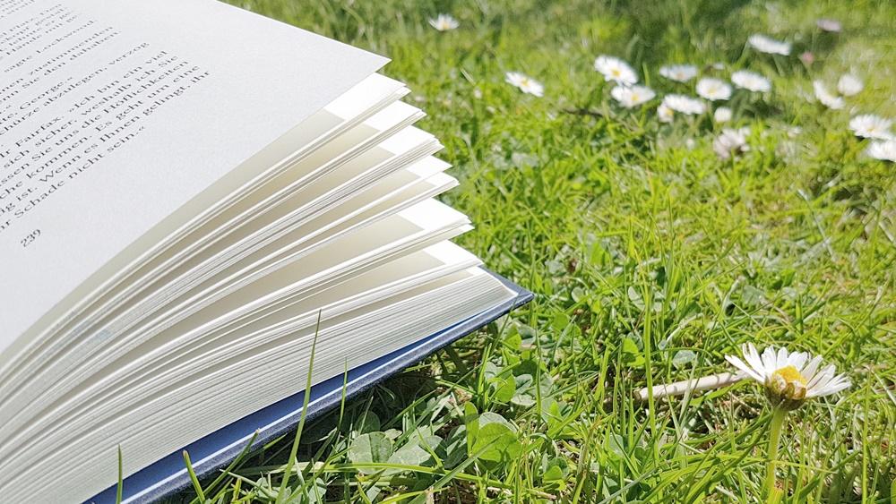 Offenes Buch im Gras
