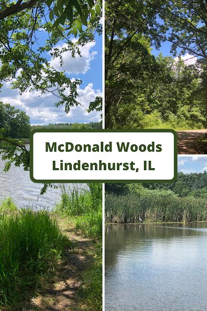 Traversing Through Nature's Wonders at McDonald Woods in Lindenhurst, IL