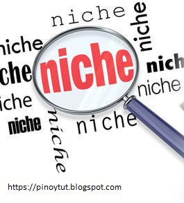 Best formula to get high website niche