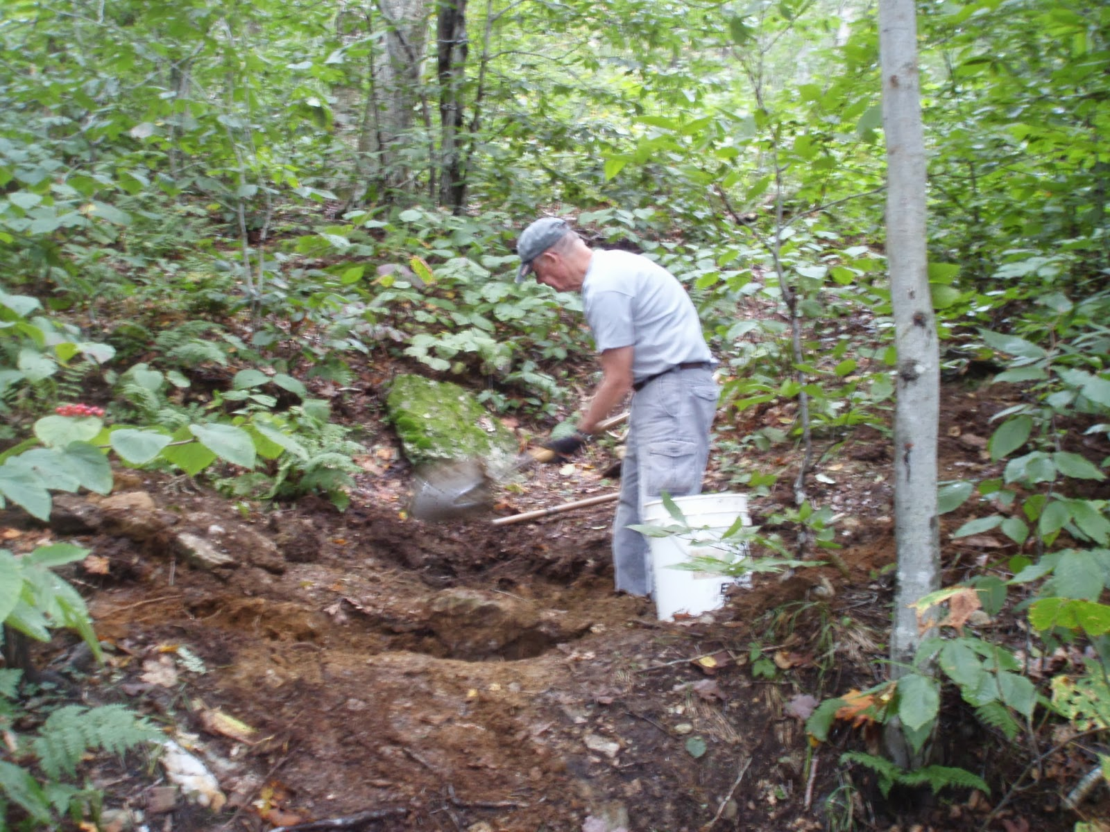 Fun in the Woods--Massachusetts AT Committee Project Blog ...