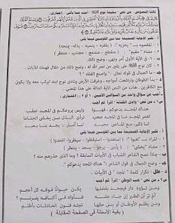 أسئلة اختبار اللغة العربية للشهادة الإعدادية 2021 محافظة القاهرة 3
