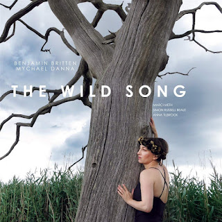 The Wild Song - Marci Meth - Modern Poetics