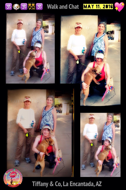 Jilly Jesson Smyth - Play Chat - Walk Chat - Dog Chat - Tucson