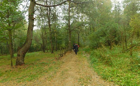 Opuszczamy leśne ostępy Magurskiego Parku Narodowego.