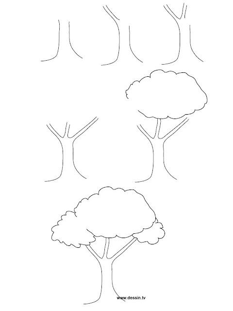 رسم شجرة بالقلم الرصاص