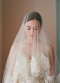 Fabulous wedding hairstyles with veil over face