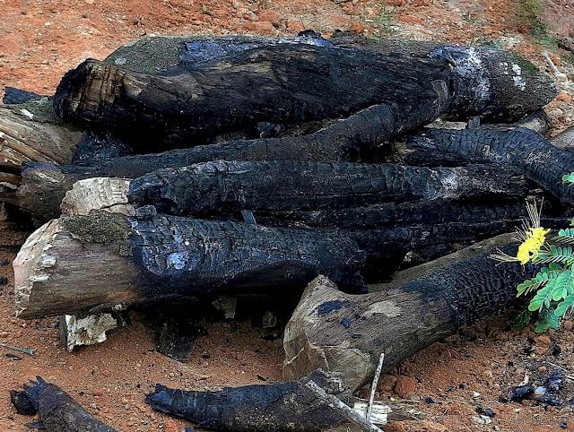 Decreto confirma proibição de fogueiras e fogos de artifício em Campina Grande