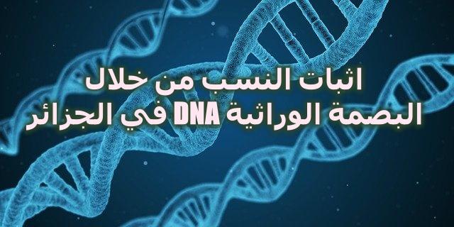 اثبات النسب من خلال البصمة الوراثية DNA في الجزائر