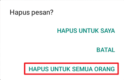 WhatsApp - Hapus pesan?