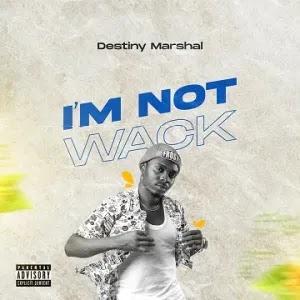 MUSIC: Destiny Marshall – (Dear Nigerians) I'm Not Wack