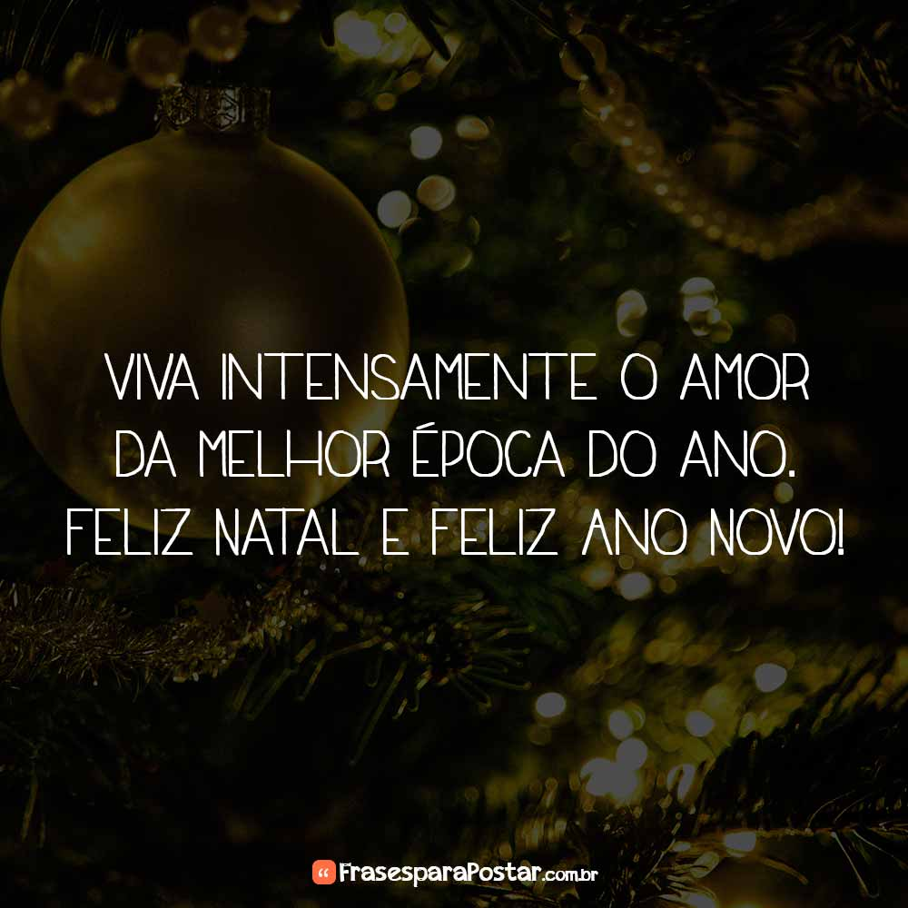 Viva intensamente o amor da melhor época do ano. Feliz Natal e Feliz Ano Novo!