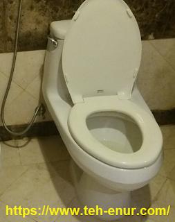 Toilet duduk di Madinah