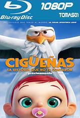 Cigüeñas: La historia que no te contaron (2016) BRRip 1080p / BDRip m1080p