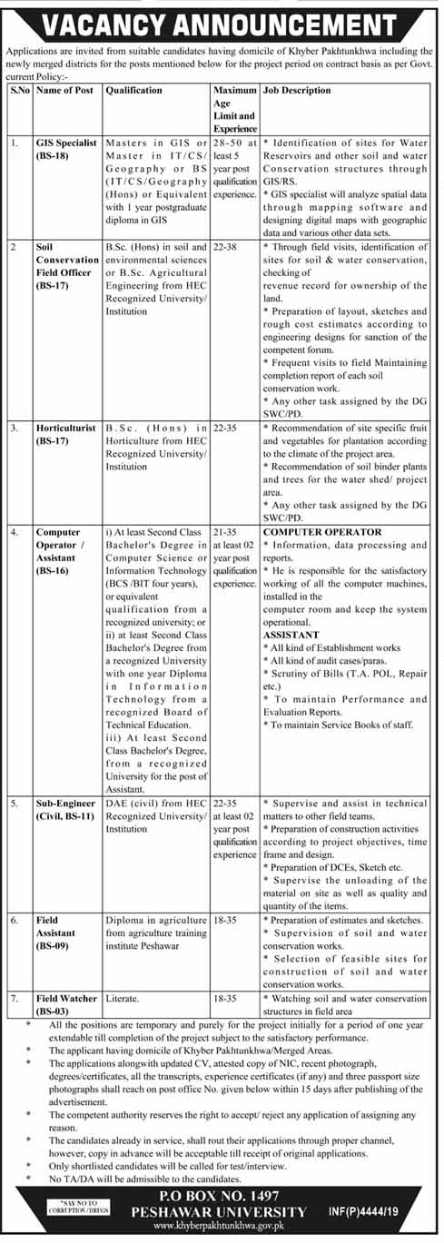 Jobs in Peshawar University KPK 2019