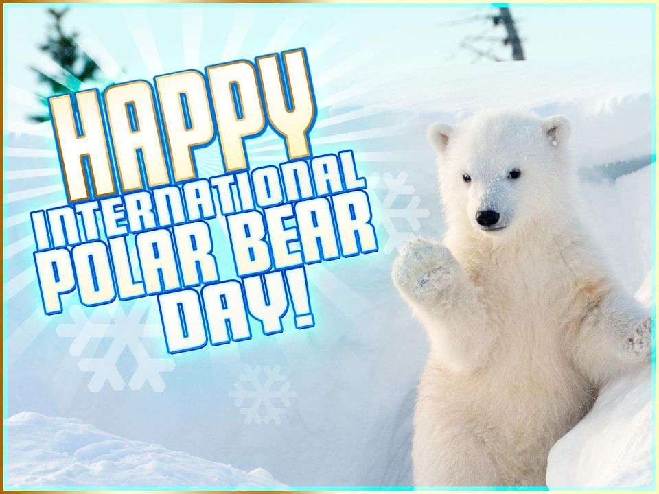 International Polar Bear Day Wishes for Whatsapp
