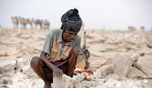 Menambang Garam di gurun