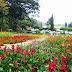 Taman Bunga Nusantara Pollung