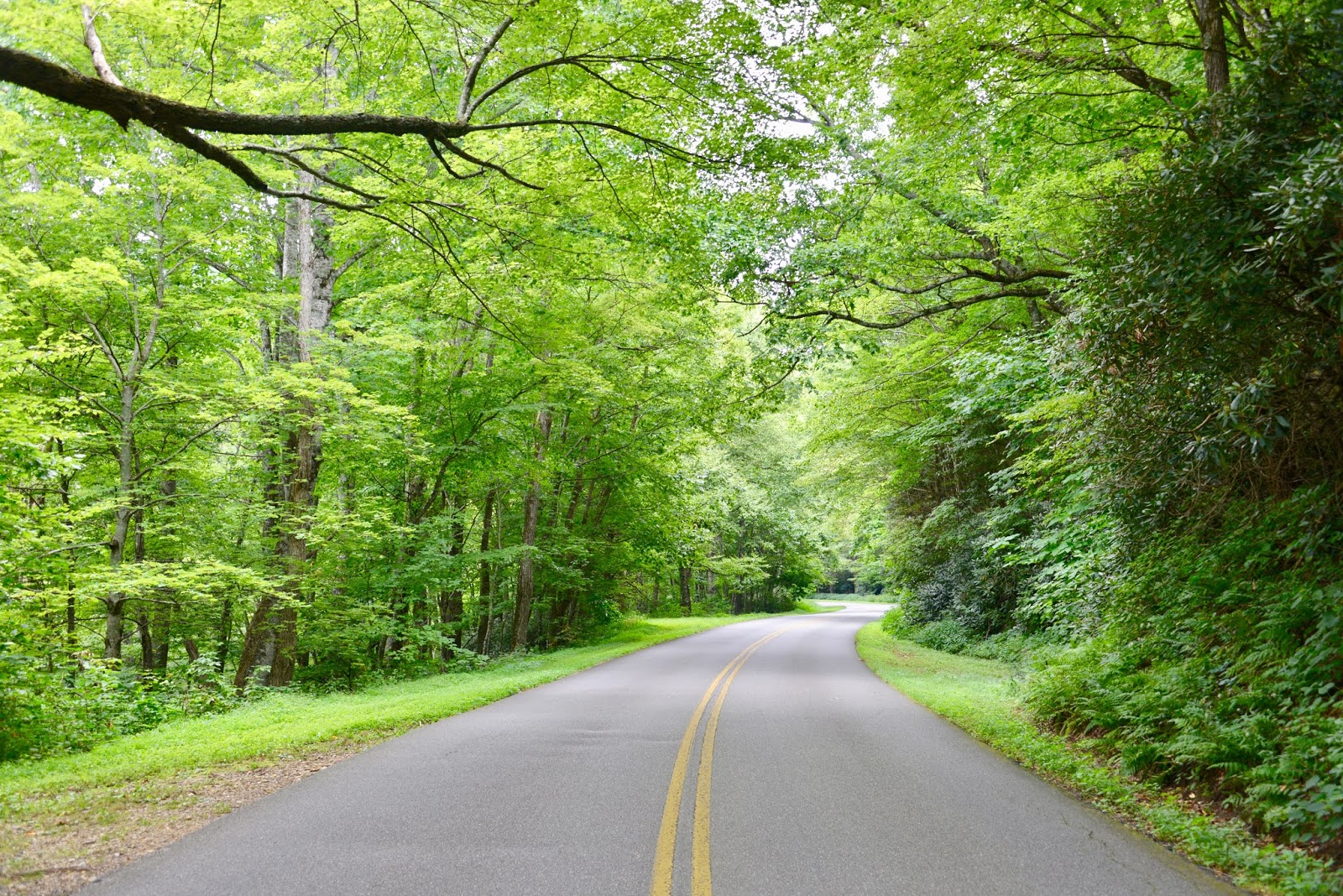 Southeast: Blue Ridge Parkway