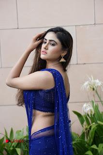 Actress Sony Charishta  Pictures in Blue Saree at Deep Mela 2016  0007.JPG