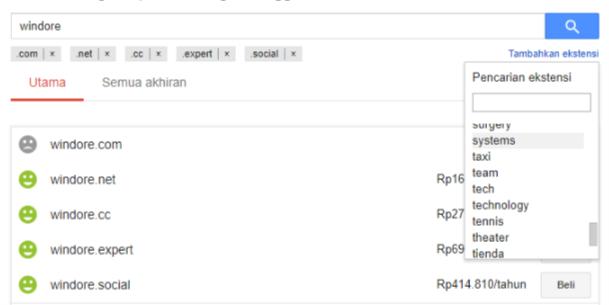 Cara Cek Status Domain dengan Google Domains