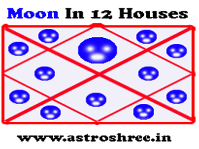 effect of moon in 12 houses of horoscope