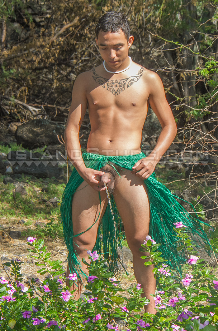 Guys Into Cmnm Hawaii Nudist And Gay Beaches Oahu And -1454
