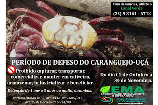 http://vnoticia.com.br/noticia/4057-meio-ambiente-de-sfi-alerta-para-inicio-do-defeso-do-caranguejo-e-guaiamum