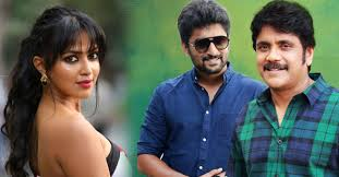 Amala Paul To Romance With Nagarjuna