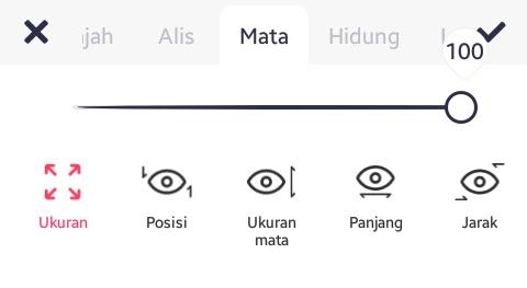 Tab Mata