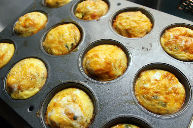 Buffalo Chicken Egg Muffins (Low Carb and Gluten Free)