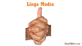 Linga Mudra for Weight Loss